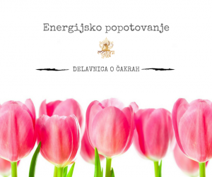Energijsko popotovanje (1)