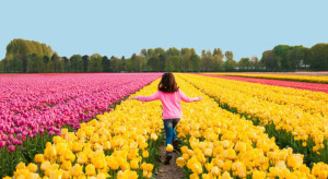 10-ways-to-make-the-most-of-the-flower-season-in-holland-with-kids-flowers-of-holland