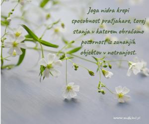 online-program_-meditativno-popotovanje-4