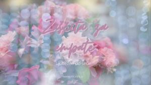 zascita-za-empate