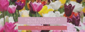 online-tecaj-joge-za-boljso-vitalnost-_mokini-yoga